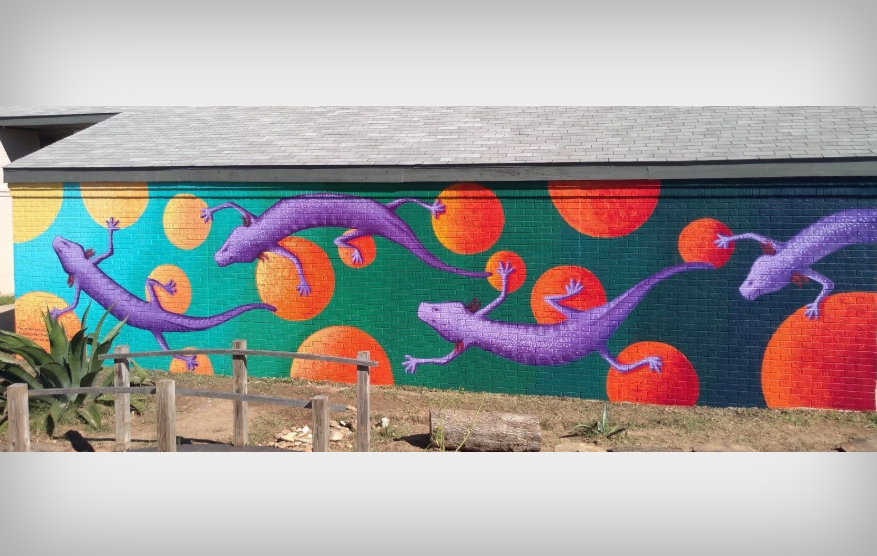Austin blind salamander, Endangered Species Mural Project