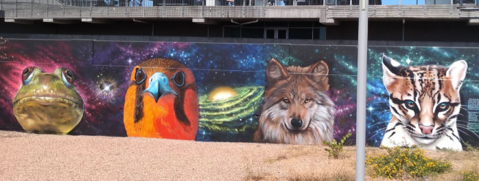 borderlands species, Endangered Species Mural Project