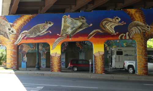 Carolina northern flying squirrel mural by Roger Peet and Tricia Tripp
