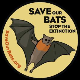 Safe Our Bats