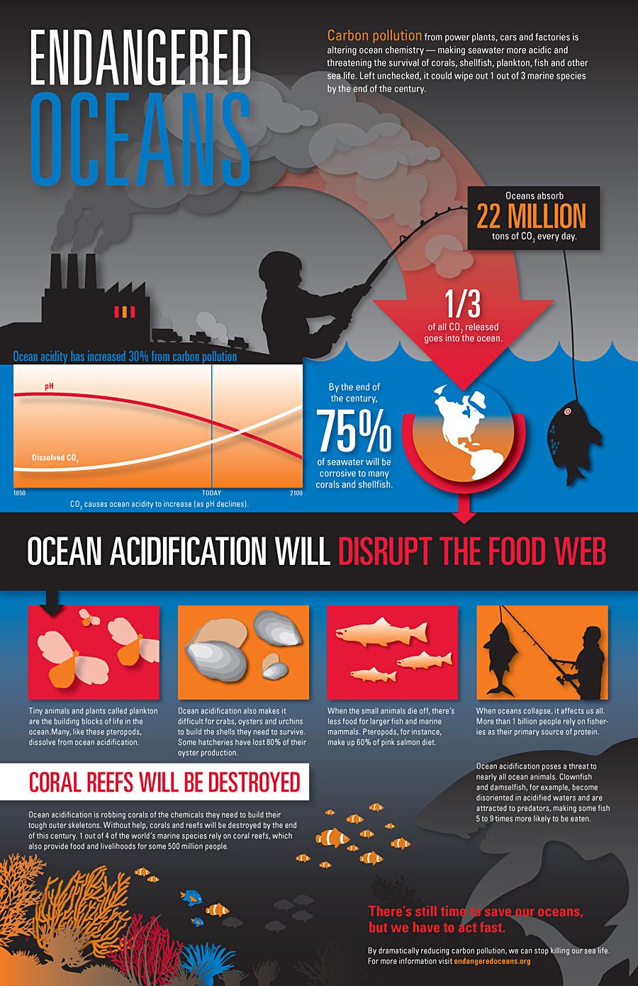 endangered oceans infographic
