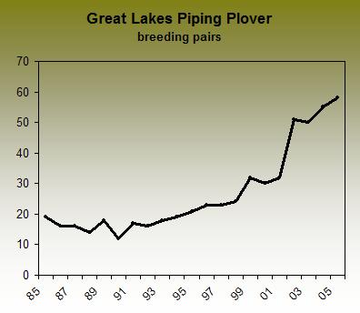 Predators can halt plover population success in Great Lakes