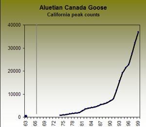 Canada Goose hats sale fake - Northwest region
