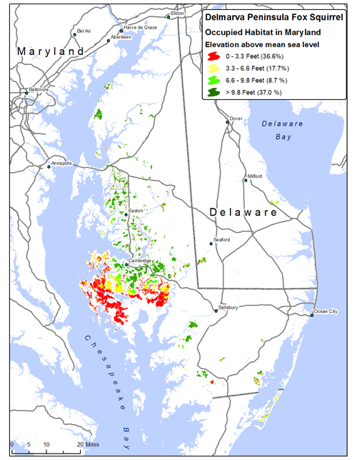 Sea-level Rise: Maps on energy map, geographic information system map, coastal change map, elevation map, game level map, travel risk map, summit map, rehab map, sea fish, sea bass map, traffic map, high altitude map, sea rise map, environment map, baltic sea map, contrast map, sea surface temperature map, new jersey topographic map, deep sea map, contour line map,