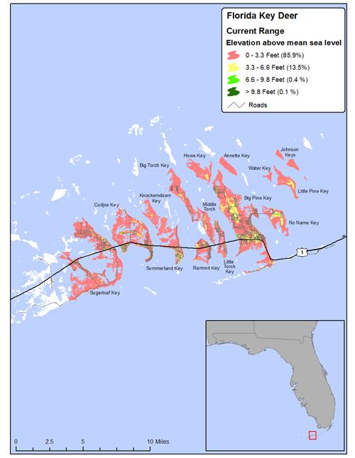 Sealevel Rise Maps - Sea level rise map florida
