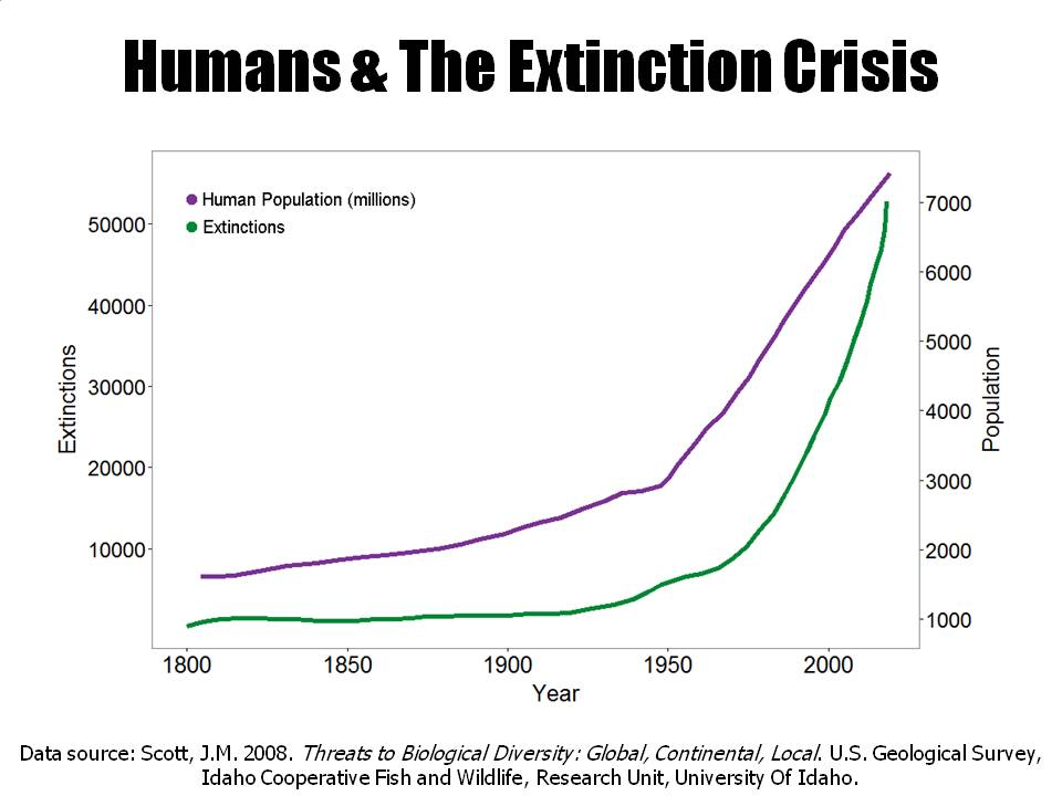 Human population growth and extinction more atmospheric nitrogen is now fixed by humans that all other natural processes combined 3 altavistaventures Gallery