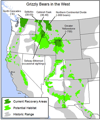Bears In Oregon Map.Grizzly Bears Need Continued Endangered Species Act Protection To