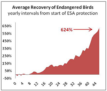 Average Recovery of Birds