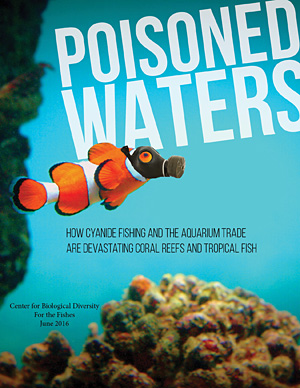 cyanide fishing Vaughan r pratt charles victor barber is a senior associate and southeast asia  field projects coordinator in the biological resources.