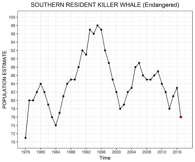 Puget Sound Orca Population Graph