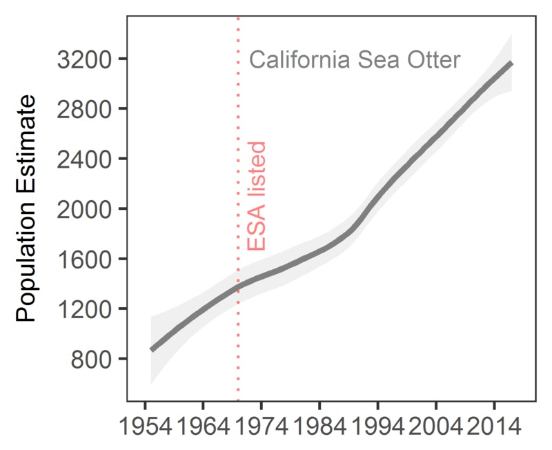 California sea otter population