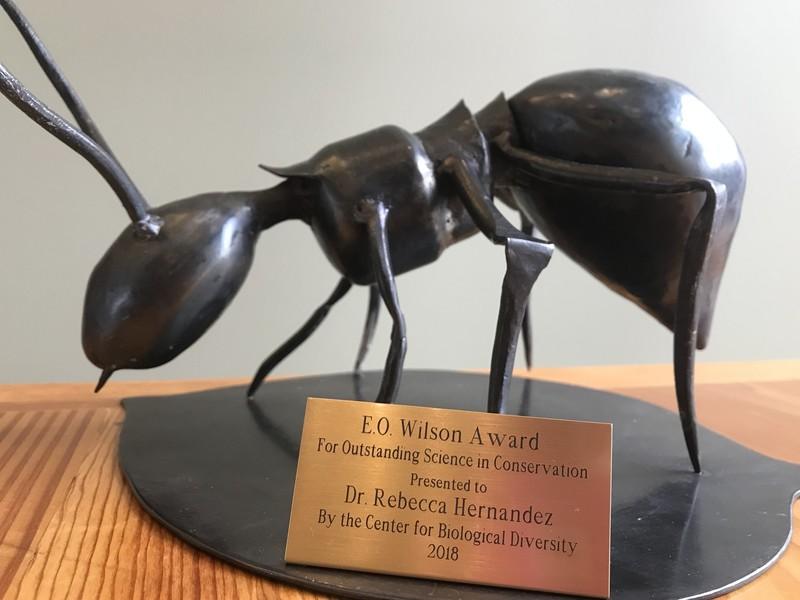E.O. Wilson award