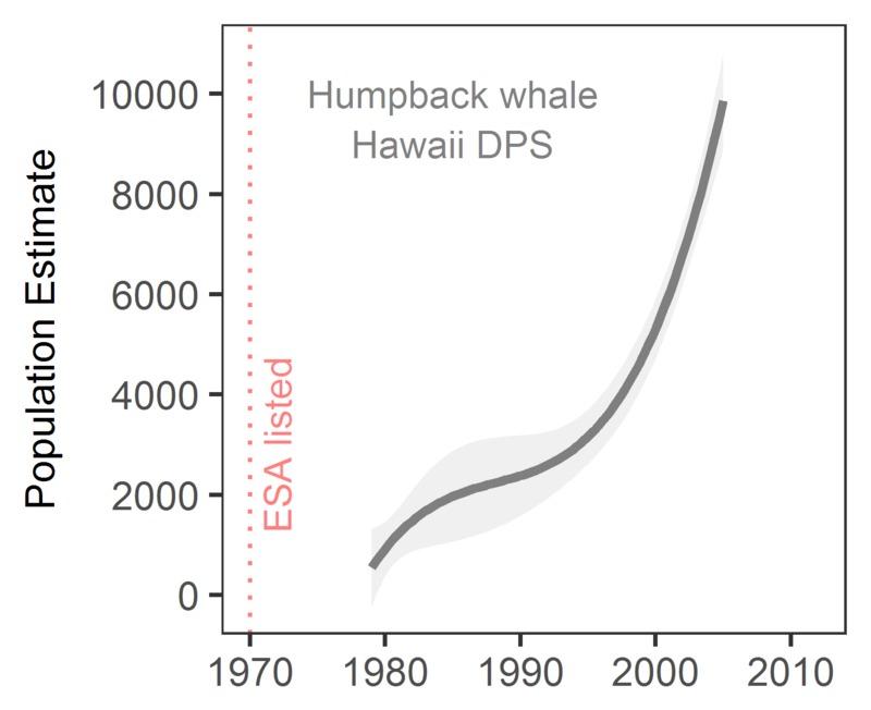 Humpback whale population