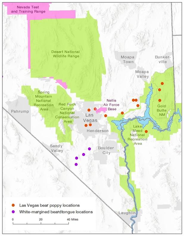 Nevada rare plant map