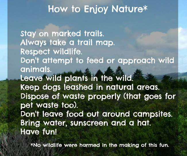 How to Enjoy Nature