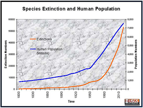 Species Extinction and Human Population