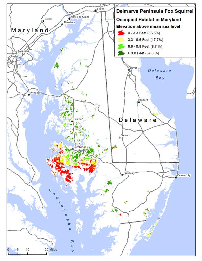 Maryland habitat occupied by the Delmarva Peninsula fox squirrel on