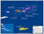 Caribbean_skink_1_Curtis_Bradley_Center_for_Biological_Diversity_FPWC.pdf