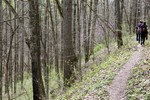 2_Wayne_National_Forest_Marietta_Unit_Taylor_McKinnon_FPWC.JPG