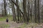 3_Wayne_National_Forest_Taylor_McKinnon_FPWC.JPG