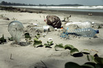 Trash_On-The_Beach_Plastics_by_epSos.de_FPWC_Commercial_Use_OK.jpg