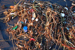 plastic_ocean_San_Francisco_shore_Kevin_Krejci_flickr_FPWC_Commercial_use_ok.jpg