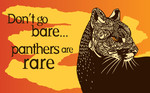 Endangered Species Condoms - Panther.jpg