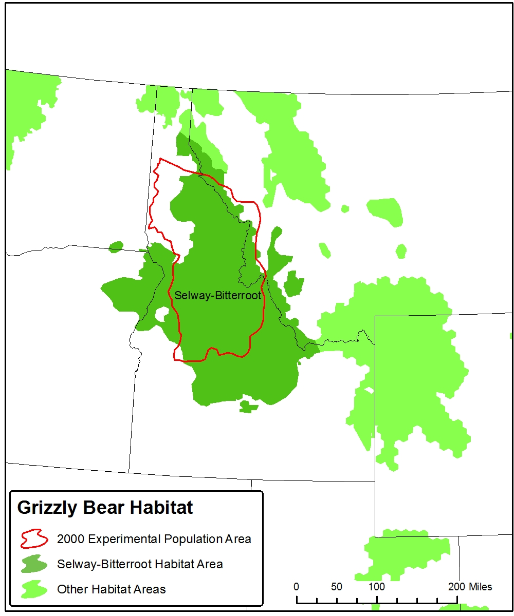 recognized as one of six grizzly bear recovery areas in the 1993 recovery plan for the species which noted the importance the selway bitterroot could